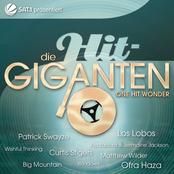 Die Hit Giganten - One Hit Wonder