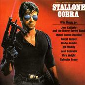 John Cafferty and The Beaver Brown Band: Cobra