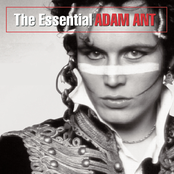 Adam Ant: The Essential Adam Ant