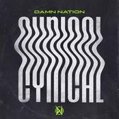 Damn Nation: Cynical