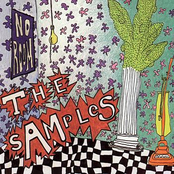 The Samples: No Room