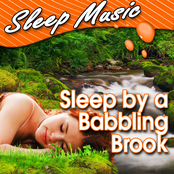 Sleep by a Babbling Brook (Nature Sounds)