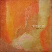 Seed of Joy