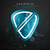 Audiotricz: Don't Say Goodbye (feat. Aloma Steele)