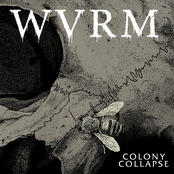 WVRM: Colony Collapse