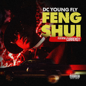 DC Young Fly: Feng Shui
