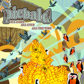 Piebald: All Ears, All Eyes, All the Time