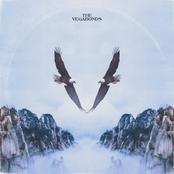 The Vegabonds: V