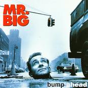 Mr. Big - Wild World