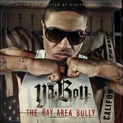 Bay Area Bully