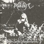 Ambre Zuetki Vuordrevartre [Compilation]