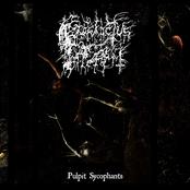 Pulpit Sycophants