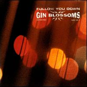 Gin Blossoms: Follow You Down