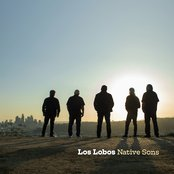 For What It's Worth by Los Lobos