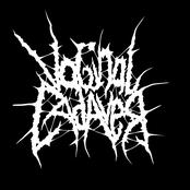 vaginal cadaver