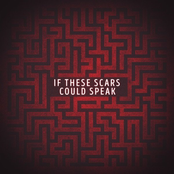 If These Scars Could Speak - Single