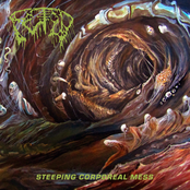 Fetid: Steeping Corporeal Mess