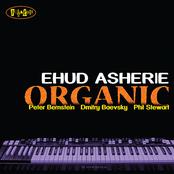 Ehud Asherie: Organic