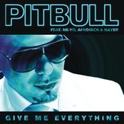 Give Me Everything (feat. Ne-Yo, Afrojack & Nayer) - Single