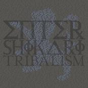 Enter Shikari: Tribalism