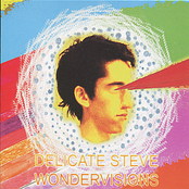 Delicate Steve: Wondervisions