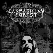 Carpathian Forest 078ccff01f044895a2a13c4c0f501b1c