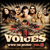 WWE: The Music, Volume 9