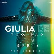 Too Bad (feat. Pic Schmitz)