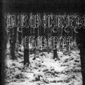 Pain - Rehearsal 1999 (Demo)