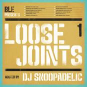 DJ Snoopadelic: Loose Joints