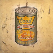 Toad The Wet Sprocket: In Light Syrup