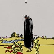 Wavves: V