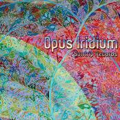 Opus Iridium