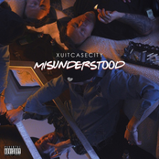 Misunderstood - Single