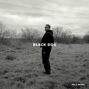 Arlo Parks: Black Dog