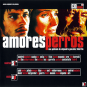 Amores Perros (Disc 1)