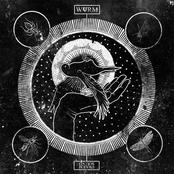 WVRM: Swarm Sound