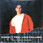 Does It Feel Like Falling (feat. Trinidad Cardona) - Single