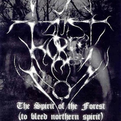 The Spirit of the Forest (To Bleed Northern Spirit)