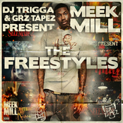 The Freestyles (DJ Trigga & Grz Tapez Present)