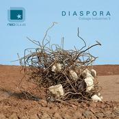 Diaspora: Cottage Industries 5