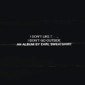 I Don't Like Shit, I Don't Go Outside