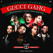 Gucci Gang (Official Remix)