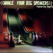 Four Big Speakers (Single)