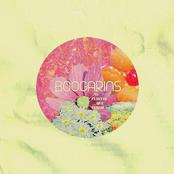 Boogarins: As Plantas Que Curam