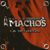 Banda Machos: La Reunión