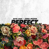Perfect (feat. Chris Brown) - Single