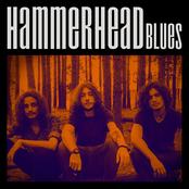 Hammerhead Blues