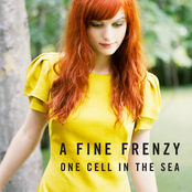 Thumbnail for One Cell in the Sea