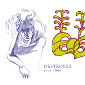 Destroyer: Your Blues